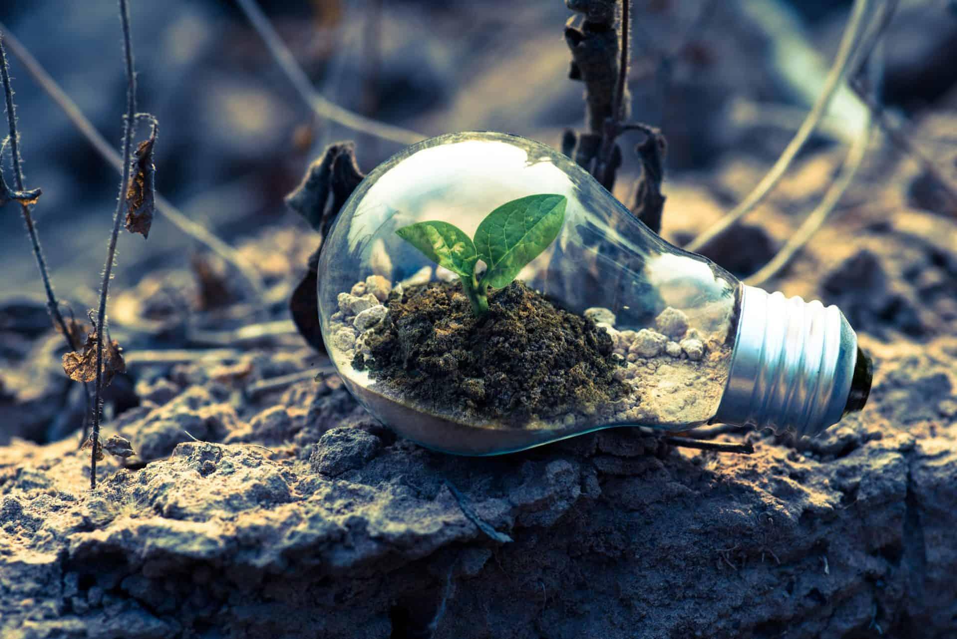 Neuer Biokraftstoff, Biokunststoff und Roger Federer Foundation