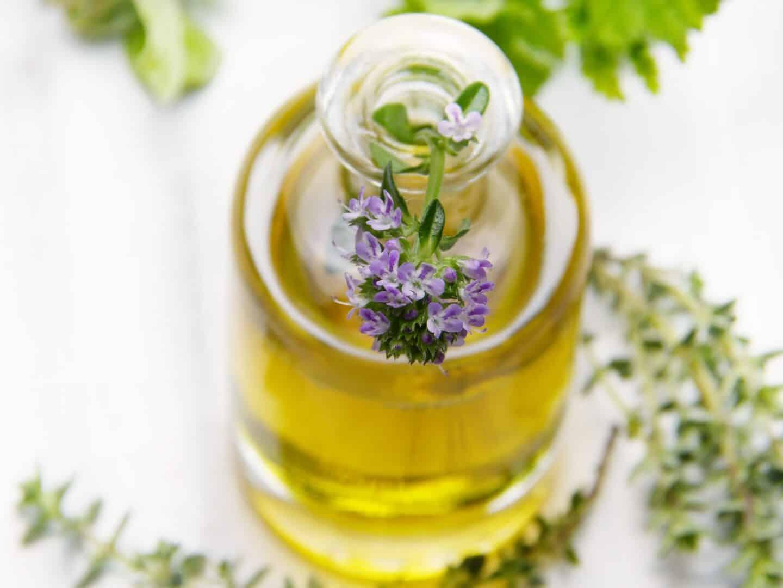 Eine Pflanze die die Kosmetik- branche begeistert