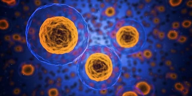 Krebs – erfolgreiche Therapie mit ECT-Galvano | Teil 8