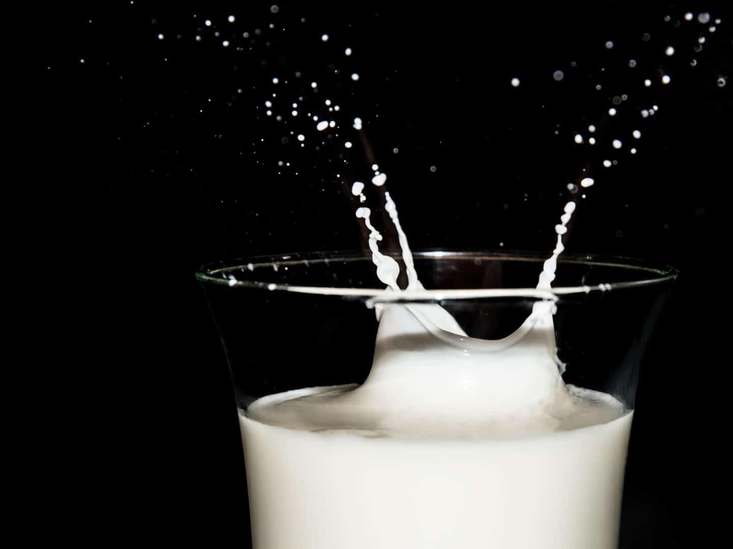 Die gesunde Portion Milch