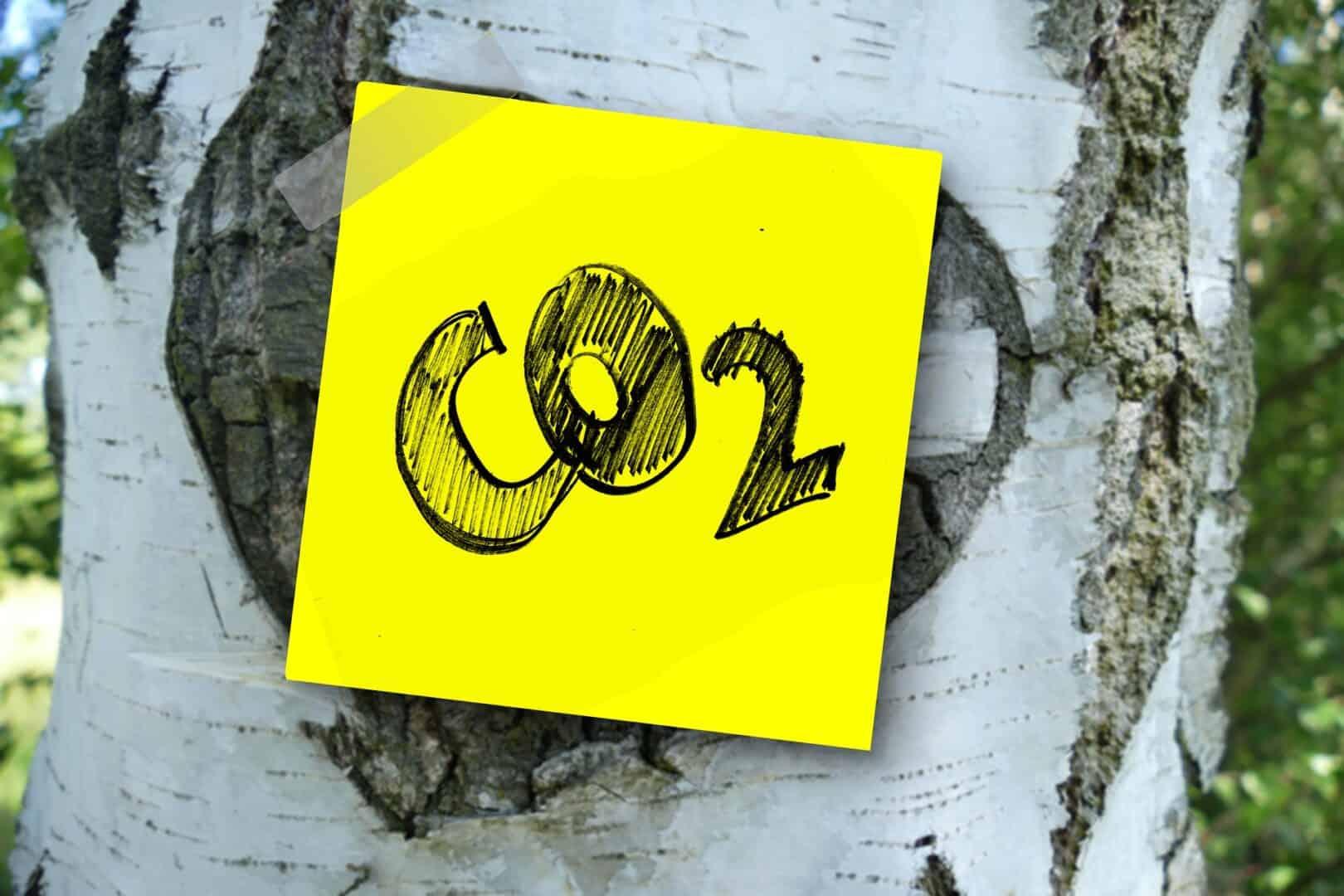 Mit richtigem Atmen den CO2 Ausstoss reduzieren