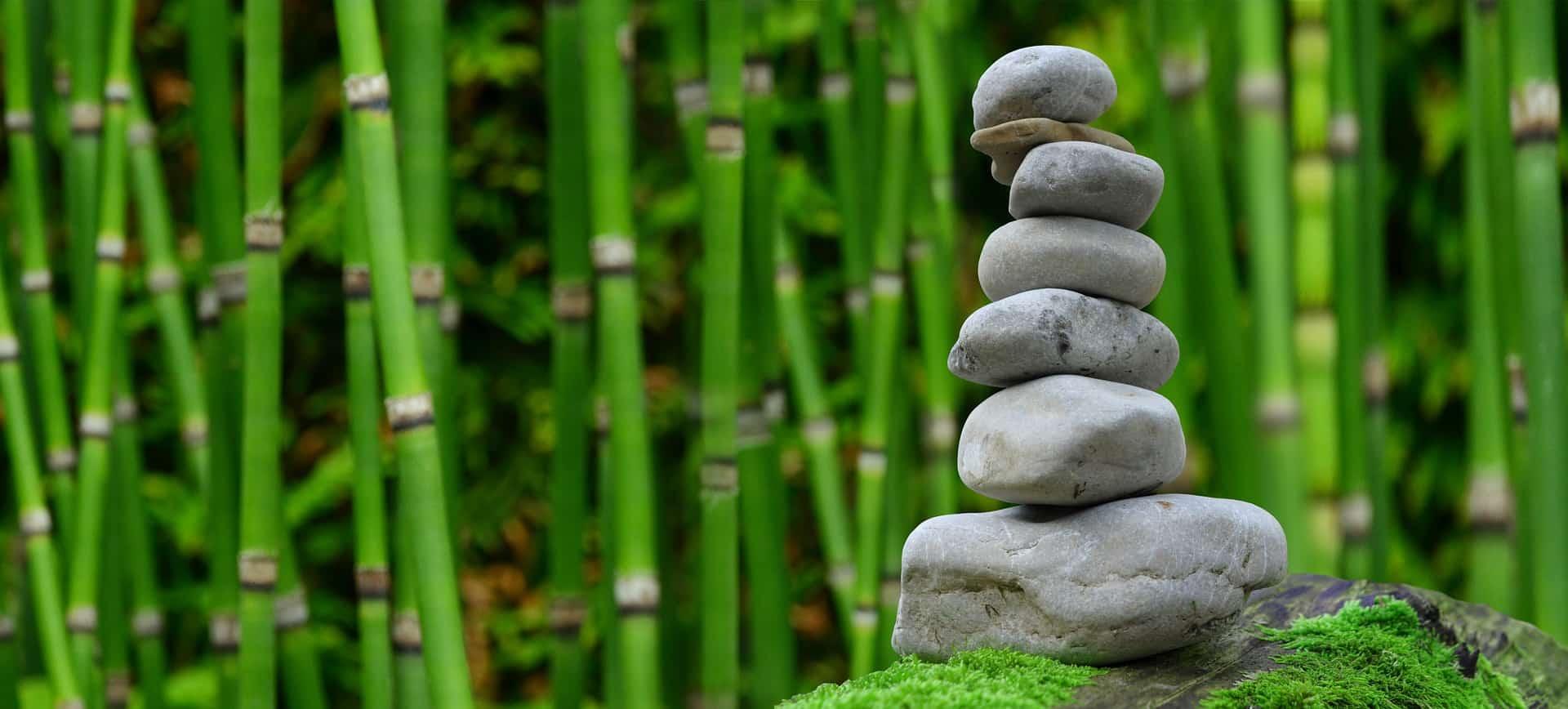 Gelassenheit – zu sich kommen – Bewusstsein fördern