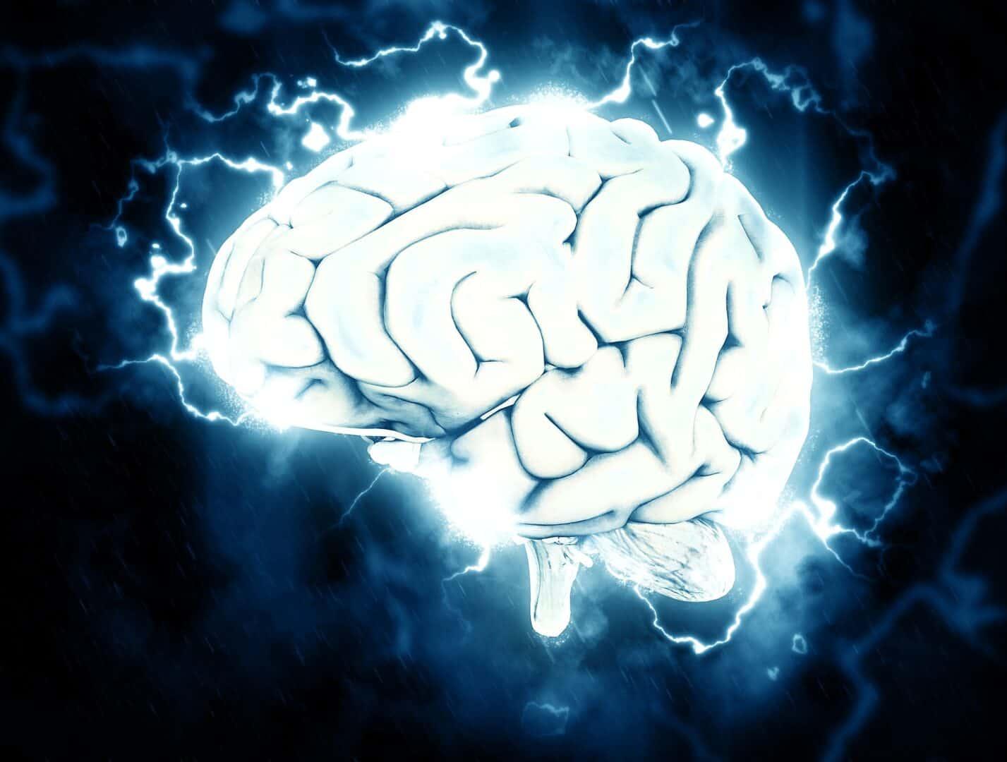 Gesundheit und Gehirn in Zeiten fortschreitender Digitalisierung