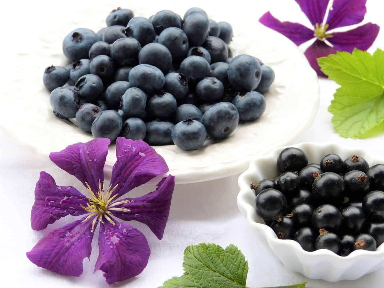 Die Bedeutsamkeit von sekundären Pflanzenstoffen