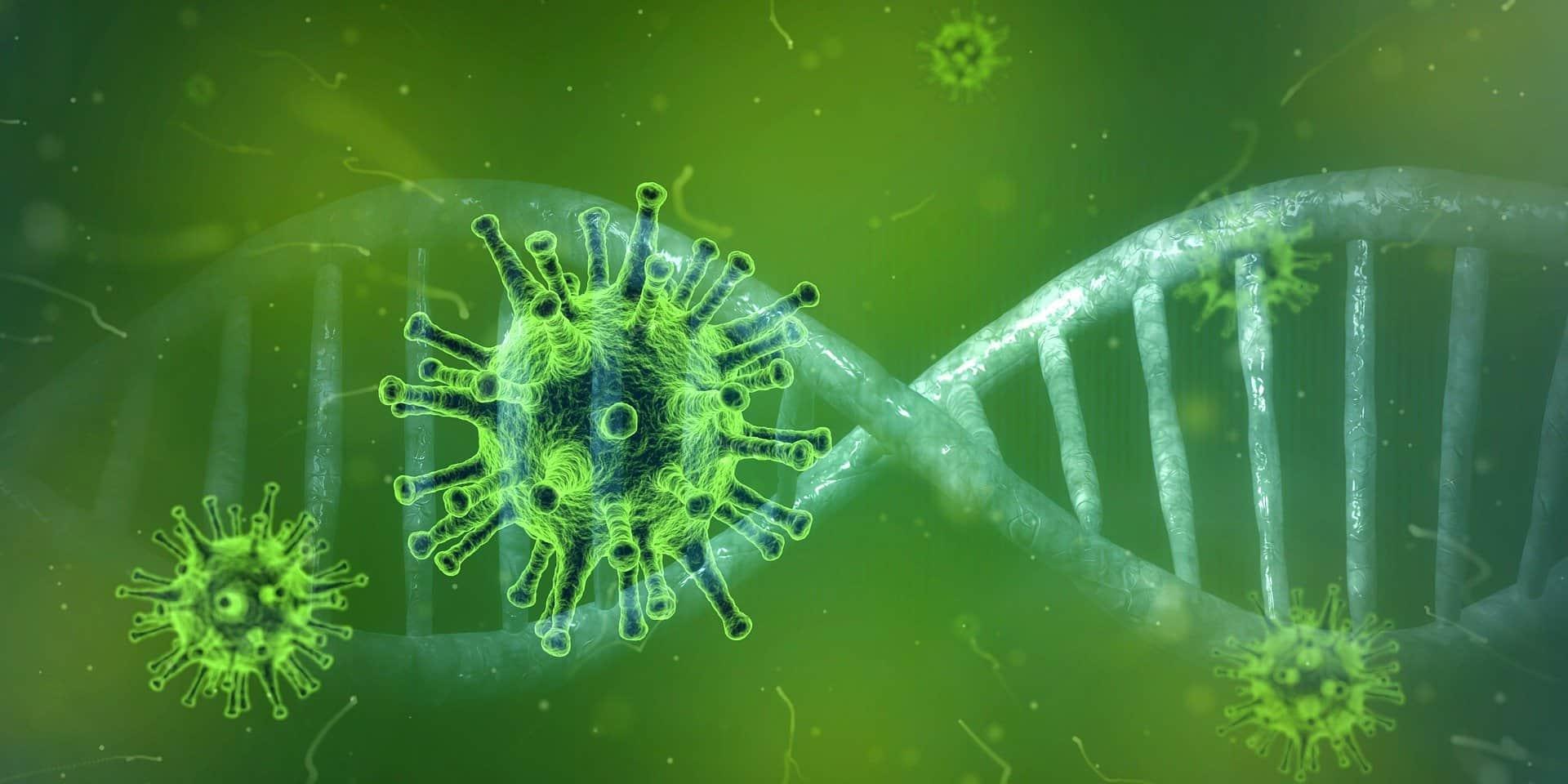 Coronavirus: Eine Grippe mit schönem Namen