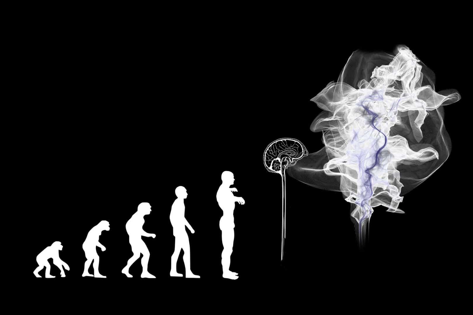 Wer glaubt noch an die Evolutionstheorie?
